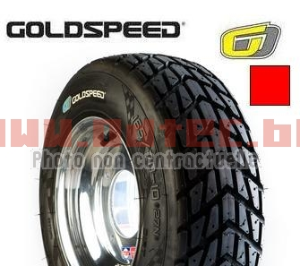 Goldspeed FT 165/70-10 27N 18.5x6.0-10 RED E4