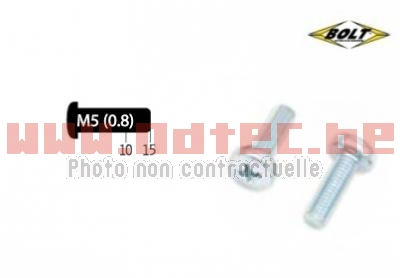 Kit vis M5X0,8X10/15 mm type Phillips Bolt par 10